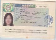 刘同学签证