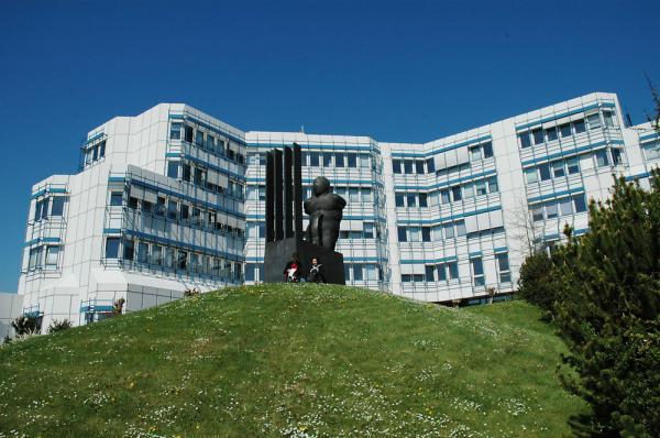 院系设置 1977年特里尔大学开始完善校园设施,教学楼,图书馆和食堂都相继完工。20世纪90年代中期,特里尔大学开展了校园的二期工程。现在特里尔大学的学生有近1万4千人,其中女生占将近60%,外国学生占14%。教职工900余名,其中教授有153名。特里尔大学的学科设置也比较丰富,横跨6个专业领域,分别设有:特里尔大学设有6个专业领域:教育学、哲学、心理学,语言学、文学、媒体学、语言数据处理 ,古埃及学、历史学、经典考古学、艺术史学、莎草纸文字学、政治学 ,经济学、社会学、数学、计算机科学、经济计算机科学